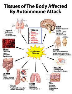 living in well being image showing tissues of the body affected by autoimmune attack