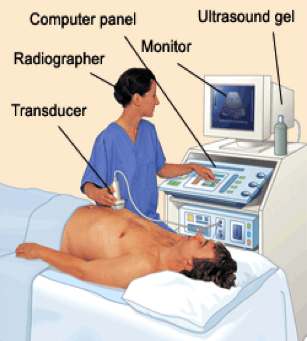 living in well being ultra sound equipment parts