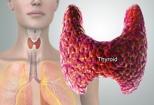 living in well being thyroid disease