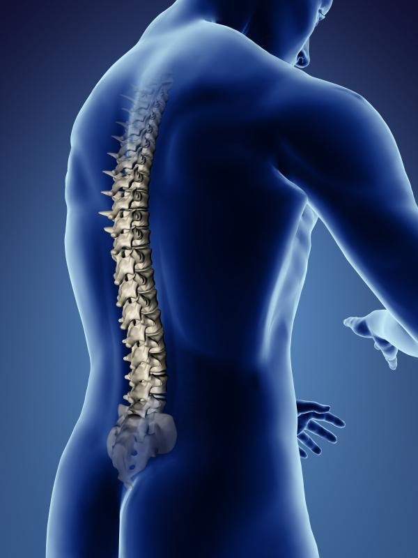 living in well being Spinal Cord Injury