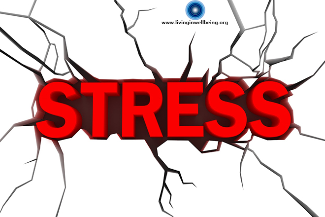 How To Lead A Stress Free Life ?