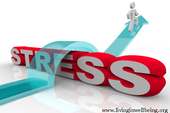The results of Stress and How To Cut down Stress
