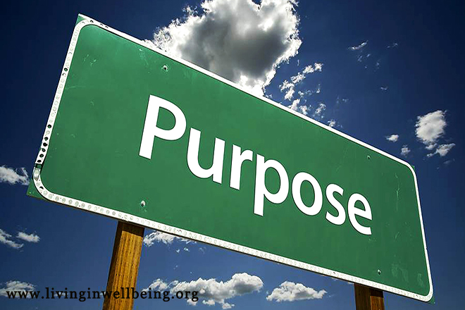 Without Purpose, Life Has No Meaning