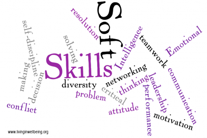 DiSC Profile and Soft Skills