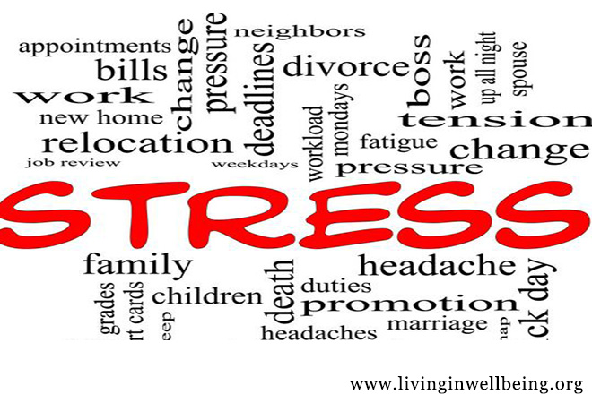 Stress and How Our Body Responds